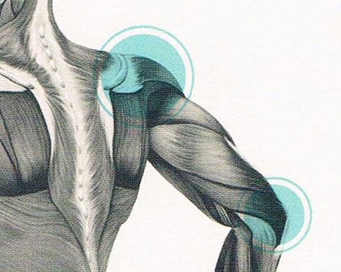 Osthéopathie